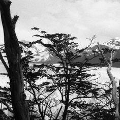 jean-puibaraud:  Perito Moreno