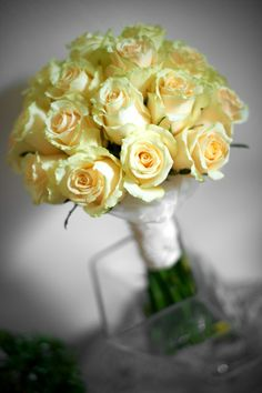 only vanilla roses