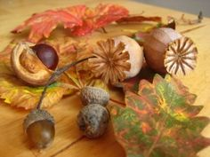 Gorgeous autumn sensory tub for babies and toddlers