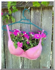Pinterest: where ANYTHING can be repurposed into a planter.