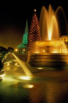 Another great metropolis in which to celebrate the season is London!  Who can resist the Christmas Tree in Trafalgar Square, which is an ann...