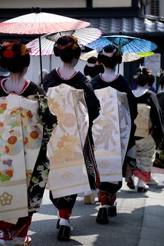 Maiko parading for Hassaku - An annual event of Geiko visiting their masters and tea house to show their appreciation with gifts, was held on August 1 in Kyoto, Japan Japanese Geisha, Japanese Beauty, Japanese Kimono, Japanese Art, Karate, All About Japan, Memoirs Of A Geisha, Parasols, Visit Japan