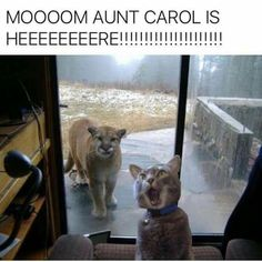 Mom, Aunt Carol is here!!