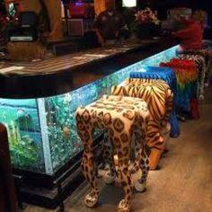 Aquarium bar