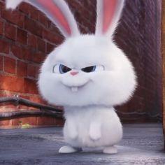 Sinchan Cartoon, Cute Bunny Cartoon, Cute Cartoon Characters, Rabbit Wallpaper, Bear Wallpaper, Cute Disney Wallpaper, Cute Cartoon Wallpapers, Snowball Rabbit, Disney Princess Pictures
