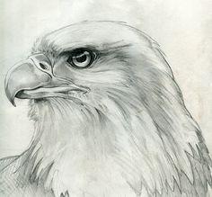 .Eagle