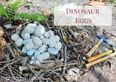 """STATION Three nests (one for each group) with """"dino eggs"""" that kids have to help hatch. Girl Dinosaur Birthday, Zoo Birthday, Birthday Party Games, 4th Birthday Parties, Birthday Ideas, Dinosaur Party Activities, Dinosaur Games, Jurassic Park Party, Elmo Party"""