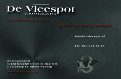 www.devleespot.nl