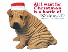Visit greatskinhealth.nerium.com to order your gift set. Available only to the general public for a limited time only for the holidays! Purchase as a RETAIL sale to access Holiday Gift Set. Don't let your wrinkles get the best of you! HAPPY HOLIDAYS!