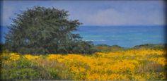 Wild flowers overlooking the Big Sur coast. Dean Holland (b. 1944)
