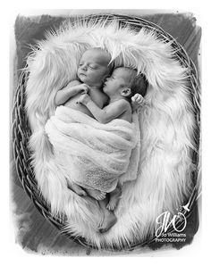 Newborn twins session by Jo Williams copyright 2014. www.jowilliamsphotography.com.au