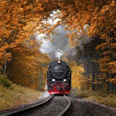 Autumn Journey - A steam train in the Harz mountains (Germany). Feel free to…