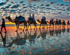 Color explosion from Cable Beach, Australia. beaches, color, sunset, camels, travel, place, cabl beach, bucket lists, western australia