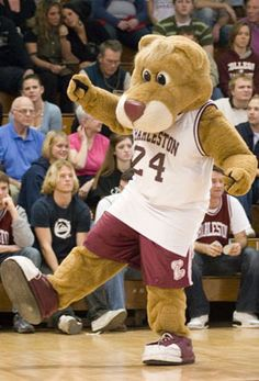 College of Charleston Cougars. Clyde the Cougar. During the 1970-71 school year, students voted to change the school mascot from the Maroons to the Cougars, in honor of a cougar that had recently arrived at the Charles Towne Landing zoo.