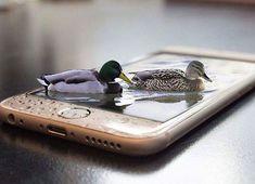 Kul att ha änder i mobilen