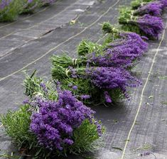 A Beautiful Lavender Farm In Wisconsin, Fragrant Isle Is Serene And Stunning Towns In Wisconsin, Lavender Color, Lavender Plants, Day Trip, Vacation Spots, Spring Time, Serenity, Places To Go, Good Things