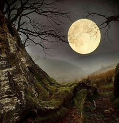 Wales..a Welsh moon...;p
