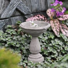 """Birdbath Cement by Birdbaths, Fountains and Ponds. $5.99. material: Cement with Metal Pick. size: 3"""" High. Very real looking little birdbath that is perfect with a flower floating in it. Comes with a metal pick for better anchoring it in the garden."""