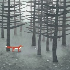 The Fox and the Forest//