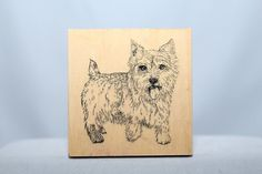 Stamp Gallery Yorkie Yorky Small Dog Good Detail Wood & Foam Backed Rubber Stamp   -   http://HomeTownVintage.com/  -Clearance Up To 50% OFF!! All Our Stamps!! Lots of   Vintage Scrap Booking Stamps From PSX (Personal Stamp Exchange), Hero Arts,   Fearless Designs, Stampin Up!, DOTS and many more  Also Find us on:  http://autopartspuller.com @HomeTownVintage @autopartspuller @preppershowto http://facebook.com/hometownvtg http://facebook.com/AutoPartsPuller