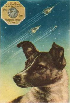 dog in space apollo - photo #42