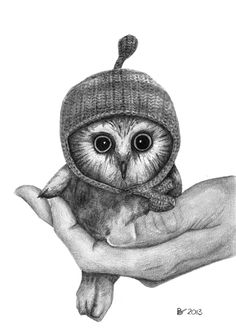 cute owl drawings - 736×1048