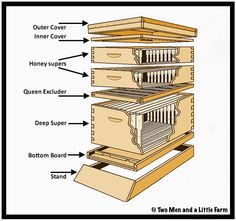 Two Men and a Little Farm: PARTS OF A BEEHIVE AND WAX FOUNDATION
