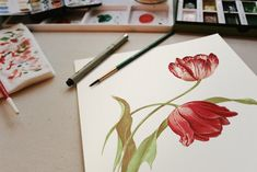 watercolour flowers in the run up of spring