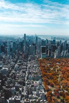 New York in the Fall, by Barron Roth | Unsplash