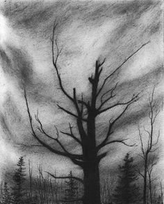simple charcoal drawings - Google Search