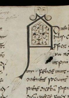 Initial letter A : St. Gallen, Stiftsbibliothek, Cod. Sang. 904: Prisciani grammatica (http://www.e-codices.unifr.ch/en/list/one/csg/0904)
