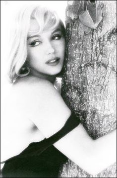 Marilyn Monroe ~ Tree hugger  I Love This Photo!