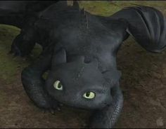 toothless <3