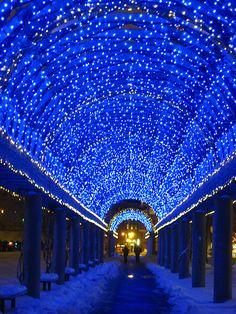 My Blue Heaven | Flickr - Photo Sharing!