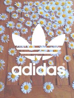 Adidas fond d'ecran Wallpaper Pâquerettes