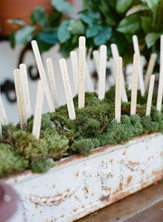 garden-wedding-escort-card-markers