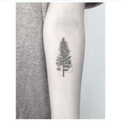 Fine line pine tree tattoo on the left inner forearm. Tattoo...