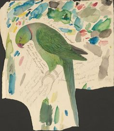 Green parrot - ink, graphite and watercolor drawing , Edward Lear
