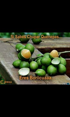 Puerto rican fruit
