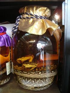 Okinawan specialty--habu snake liquor in a jar, photo. Just to remind myself not to drink anything while in Japan!