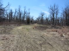 70 acres for hunting or build your home in the middle