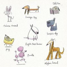 pencil pooches | Just fancied doodling a few of the more rid… | Flickr