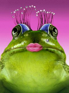 Frog kiss... maybe she'll find her Prince?