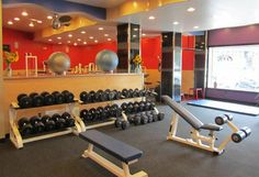 Many personal training clients are unfamiliar with gym etiquette. Be sure you and your clients are creating a pleasant environment when at the gym. Weightlifting Competition, Bodybuilding Competition, Free Weights, Workout Songs, At Home Gym, Image House, Room Organization, Luxury Real Estate, Etiquette