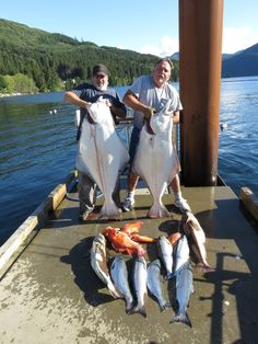 2 Big Halibut,  Ling Cod, Snapper and Salmon
