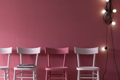 Modo Fotografia Pink Lady - Modo Fotografia