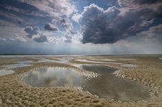 Scharhorn island, near Neuwerk island, East Friesland (DE)