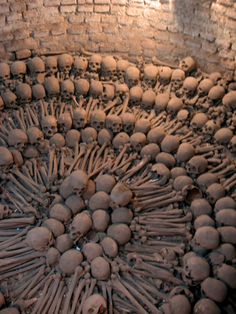 Tons of skulls and bones from the Catacombs of Ancient Rome. Ancient Rome, Ancient History, Ancient Greece, Memento Mori, The Catacombs, Skull And Bones, Ancient Civilizations, Roman Empire, Dark Art