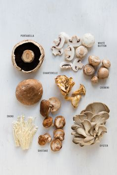 A Guide to Mushrooms is part of Stuffed mushrooms - From oyster to portabella, this guide to mushrooms will show you how to identify, prep, store and cook with everybody's favorite fungi Cooking Tips, Cooking Recipes, Healthy Recipes, Cooking Games, Easy Cooking, Delicious Recipes, Edible Mushrooms, Stuffed Mushrooms, Mushroom Varieties