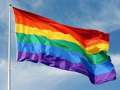Ft Rainbow Flag Polyester Lesbian Gay Pride Lgbt Banner With Grommets & Garden Gay Pride, Pride Flag, Christopher Street Day, Pride Week, Lgbt Flag, California City, Lgbt Rights, Civil Rights, Human Rights